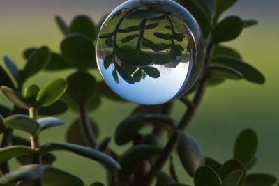 Global reflection
