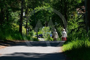 kvinnor på promenad