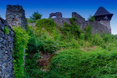 ruins Nevitsky Castle  Ukraine near Uzhgorod