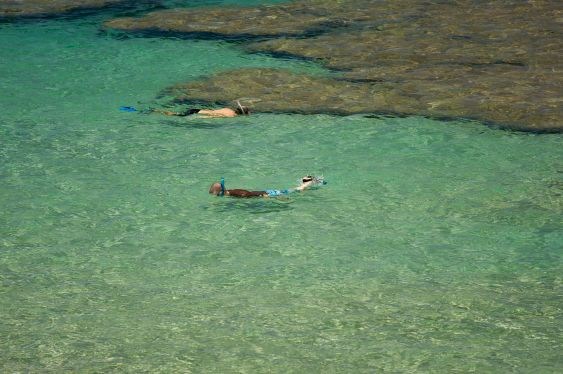 Snorkelers in the Clear Tropical Waters