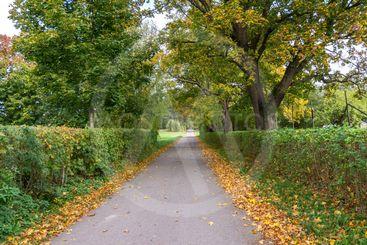 Hösten är här