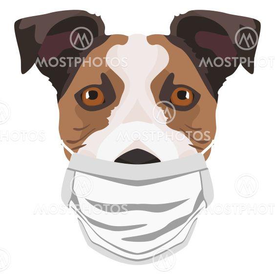 Illustration dog Jack Russel Terrier with respirator