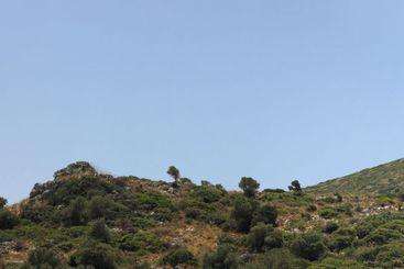 Crete's hills and vegetation under a blue sky