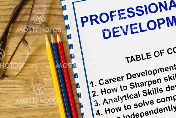 Professional development seminar-