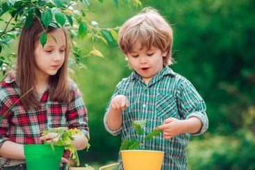 Kids planting flowers in pot. Children farmer in the...