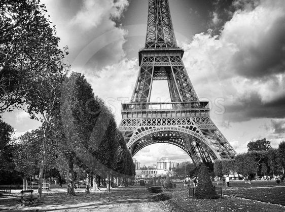 Dramatic Black and White view of Eiffel Tower