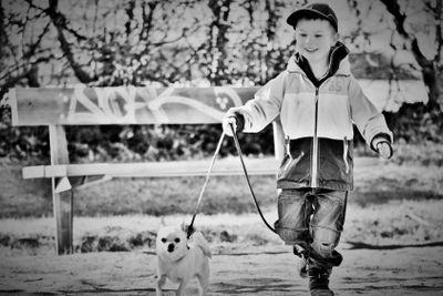 Pojke och chihuahua