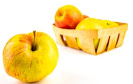 Apples on a white background with place for text.