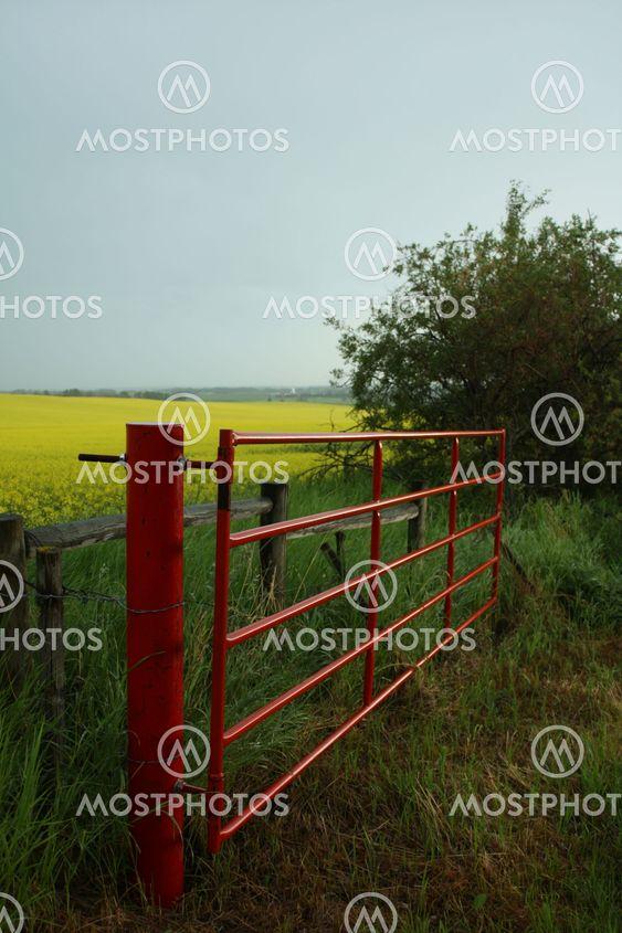 Punainen Gate