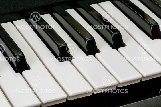 the keys of a musical instrument