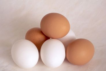 Eggs  on painted background