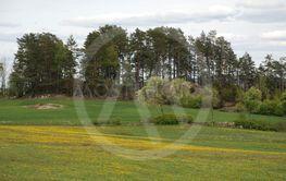 Våren har anlänt till Småland  (Sweden)