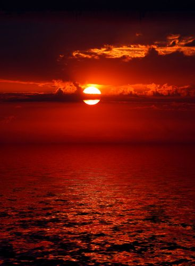 bloody sunrise over sea