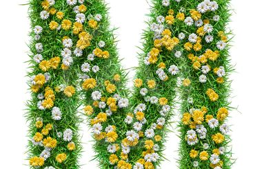 Letter M Of Green Grass And Flowers