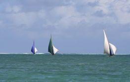 Kappsegling Mauritius 2