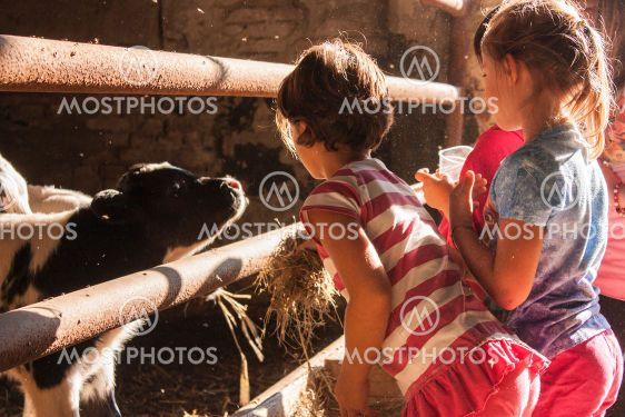 Children play in the countryside 11