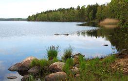 Svensk natur  (Sweden)