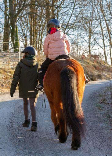 En flicka leder en häst med en liten ryttare - Silvertid