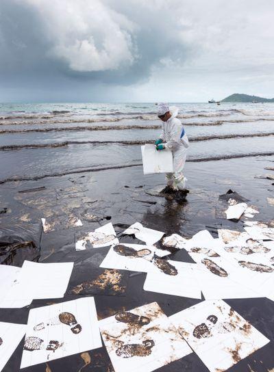 Worker placing absorbent paper