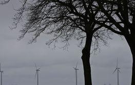 Offshore wind power in the oeresund chanel Copenhagen 2008