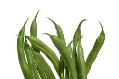 Green Bean Bouquet