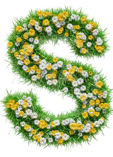 Letter S Of Green Grass And Flowers