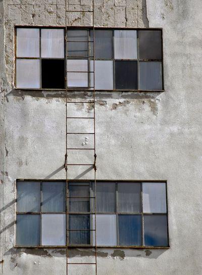 Blue_windows