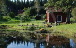 Damm i septembersol 1(2)  ( Sweden)