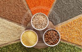 Colorful grains and seeds - healthy choice variety...