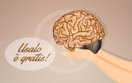 the advice you use the brain
