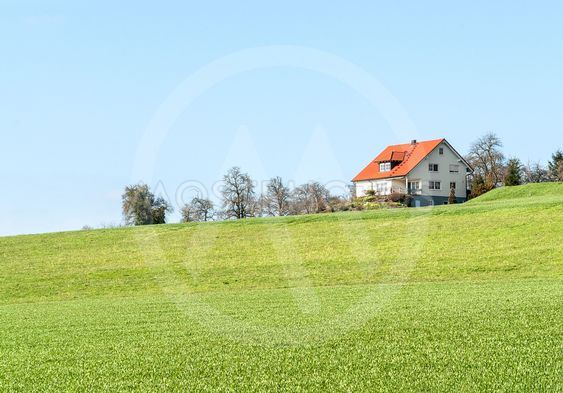 house and meadow
