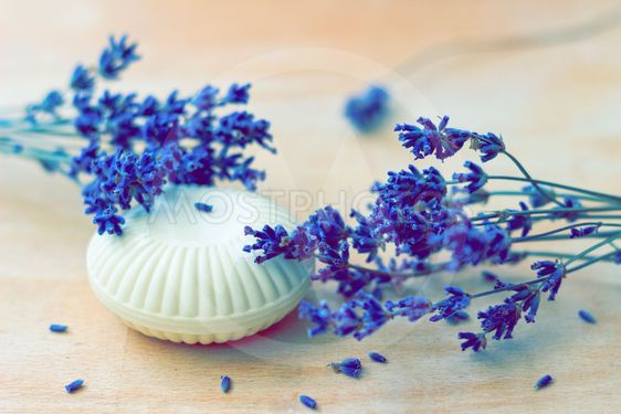 Soap and lavender flowers
