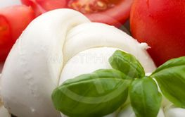 Mozzarella tomatoes and salad