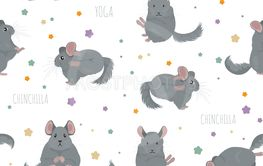 Chinchilla yoga poses and exercises. Cute cartoon...