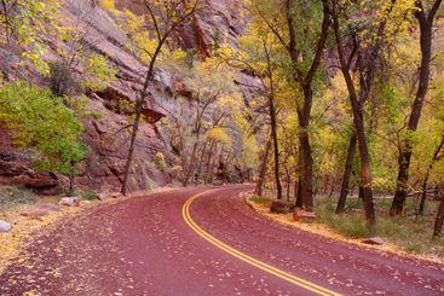 Zion Canyon Road