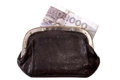 Swedish kronor and purse