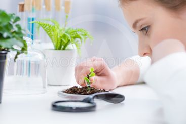 Side view of little girl working with green plant in soil...