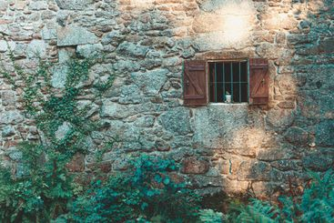 A rock wall with a wooden window with a plant