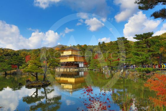 fall season of Kinkaku-ji Zen Buddhist temple