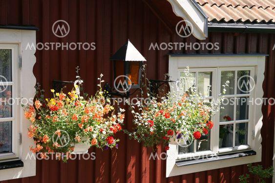 Flower & lamp arrangement