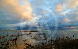Powerful sky at the lake