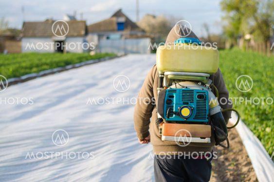A farmer with a mist sprayer on his back walks through...