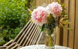 close up of wonderful bunch of pink peonies and...