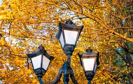 Decorative lampposts on the background of autumn foliage.