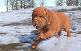 3D Rendering Puppy Playing