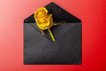 wilted yellow rose bud in black envelope