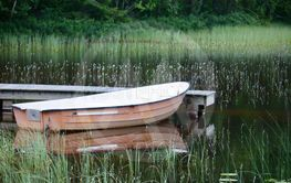 Roddbåten