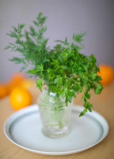 Green bouquet with fresh parsley and dill