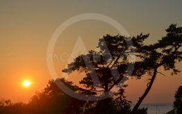 Solnedgång vid en strand på Gotland 9
