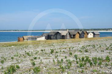Fiskeläget Helgumannen på Fårö på Gotland 4